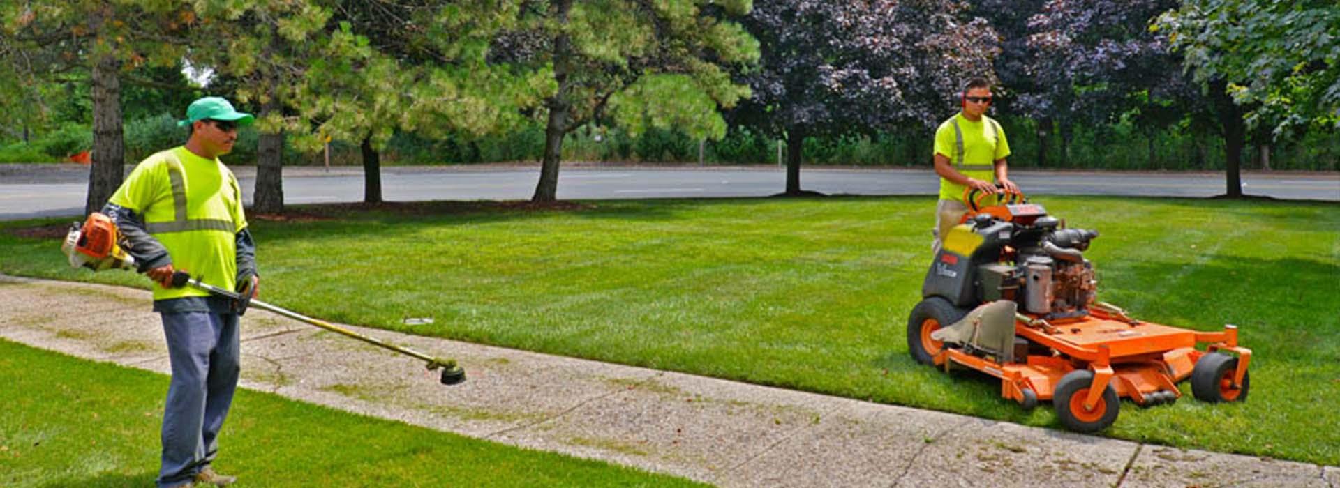 Canete | Landscape Maintenance